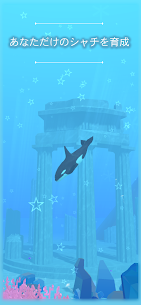 Virtual Orca Simulation game 3D -Aquarium World- 2