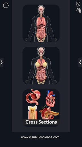 Organs Anatomy Pro. screenshot for Android