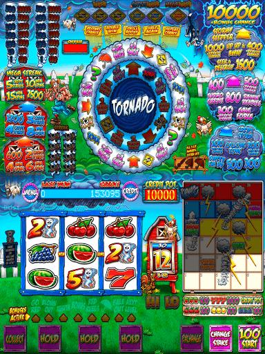 Reflex Gaming Pub Fruits 2.0.4 screenshots 3