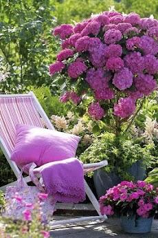 Garden Design Ideasのおすすめ画像1