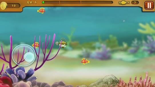 Cá lớn nuốt cá bé 4