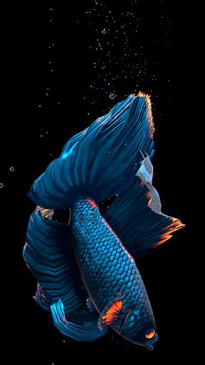 Betta Fish Live Wallpaper FREE 1.4 Screenshots 6