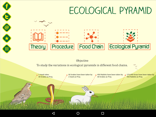Ecological Pyramid-Food Chain For PC Windows (7, 8, 10, 10X) & Mac Computer Image Number- 5