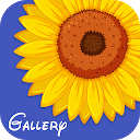 Gallery Ad Free