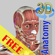 3D Bones and Organs (Anatomy) Apk