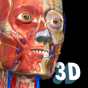 Anatomy Learning  3D Anatomy Atlas