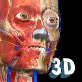 icono Anatomy Learning - Atlas de anatomía 3D