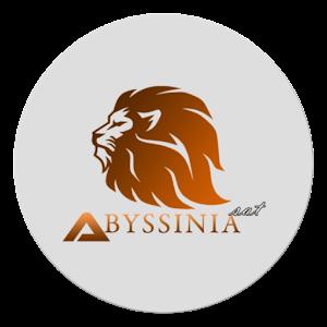 Abyssinia Sat 4.0 Horizon by Developer Eyosiyas logo