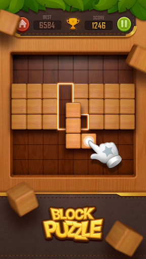 Wood Block Puzzle - 3D 3.0 screenshots 2