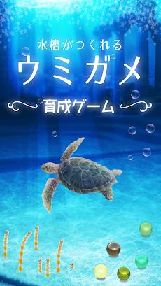 ウミガメ育成ゲーム(癒しのリラクゼーション編)のおすすめ画像1