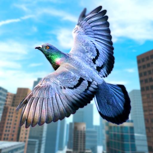 Wild Pigeon Bird City Simulator