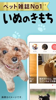 いぬのきもち・ねこのきもち 犬猫に毎日役立つペット情報のおすすめ画像1