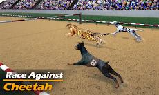 本物の犬のレースゲーム レーシングドッグシミュレーターのおすすめ画像3