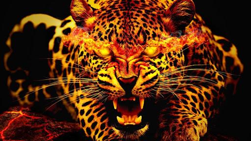 Free Beast Wallpaper FHD (Lion, Tiger, Wolf, etc) screenshots 1