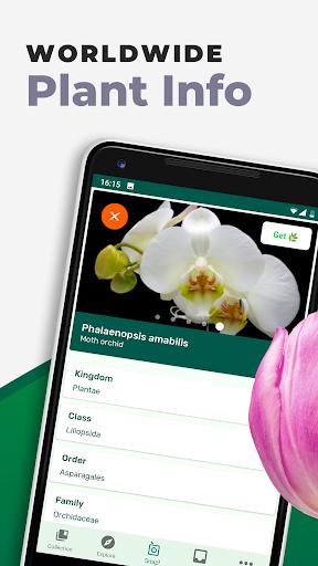 PlantSnap - FREE plant identifier app apktram screenshots 9