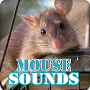 Mouse Sounds Ringtone Collection
