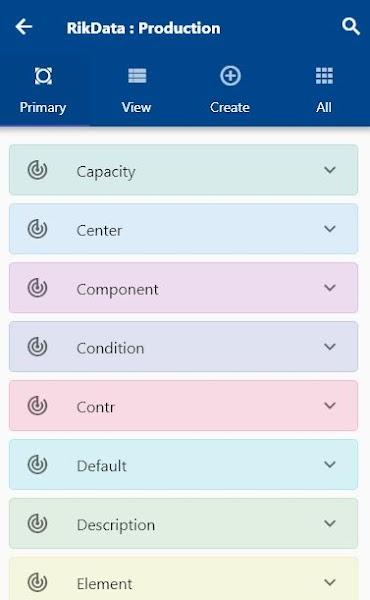RikData OneApp for EBS R12, Cloud, HANA S/4, D365