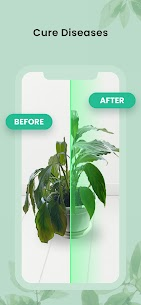 PlantIn: Plant Identification 2
