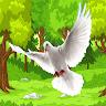 wild pigeon bird simulator game apk icon