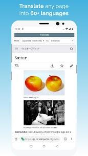 Kiwi Browser – Fast & Quiet MOD (Pro) 5