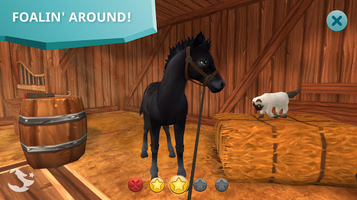 Star Stable Horses 2.81.0 screenshots 6