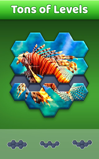 Hexa Jigsaw Puzzle u00ae 44.01 screenshots 2