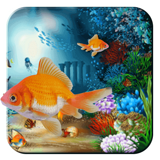 Aquarium Fish Live Wallpaper Apps On Google Play