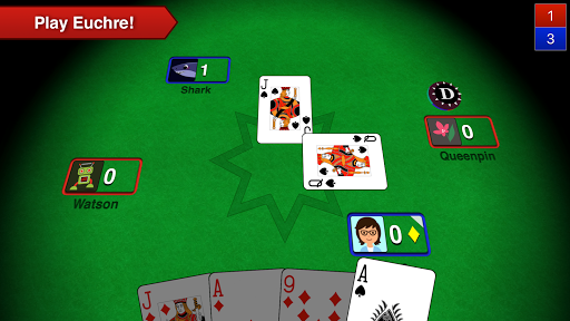 Euchre 3D 5.15 screenshots 1