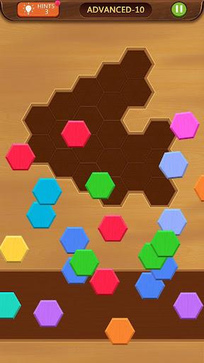Hexa Box - Puzzle Block apkdebit screenshots 2