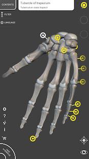 Skeleton | 3D Anatomy 2.5.3 Screenshots 3