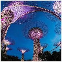 Singapore: La guida APK