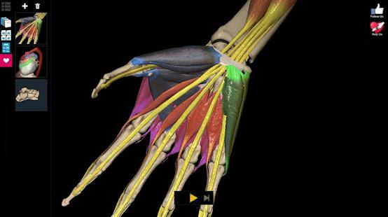 Anatomy Learning - 3D Anatomy Atlas 2.1.329 Screenshots 16