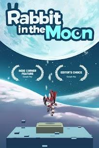 Rabbit in the moon 9