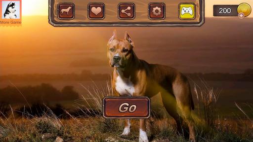 Pitbull Dog Simulator 1.0.3 screenshots 1