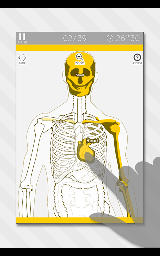 Enjoy Learning Anatomy puzzle 3.2.3 screenshots 11
