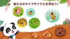 リトルパンダのすてきなこん虫たちのおすすめ画像4