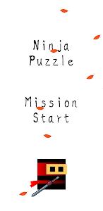 Ninja Puzzle: Free, Smart, Puzzle 1.0.12