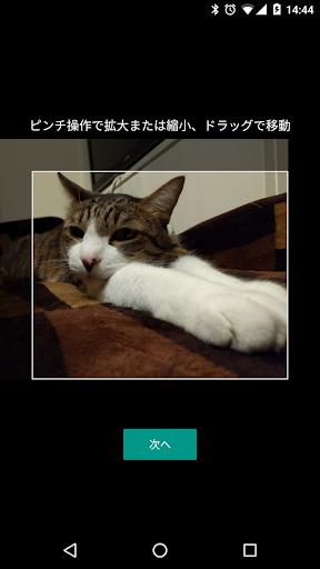 Google Japanese Input 2.25.4177.3.339833498-release-arm64-v8a Screenshots 6