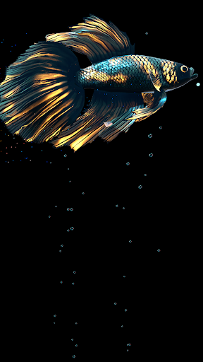 Betta Fish Live Wallpaper FREE 1.4 Screenshots 18