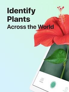 PictureThis Mod Apk: Identify Plant, Flower (Premium Features Unlocked) 8