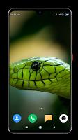 Snake Wallpaper HD
