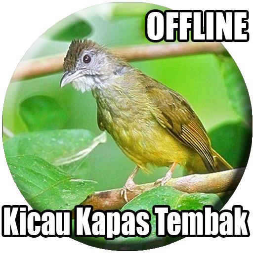 Suara Burung Kapas Tembak Gacor Apps Bei Google Play