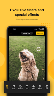 Soloop APK Download For Android 3