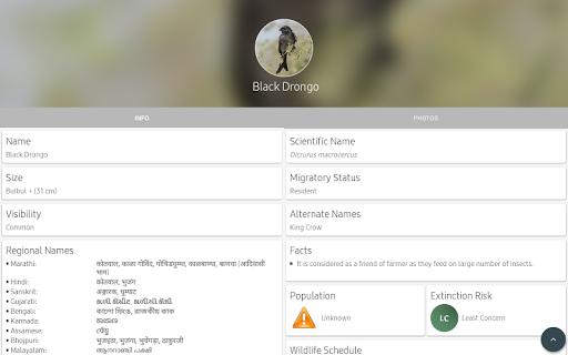 Indian Birds android2mod screenshots 13