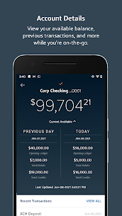 Free Capital One Intellix® Mobile 4
