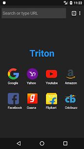 Triton  Mini Web For Pc (Download In Windows 7/8/10 And Mac) 4