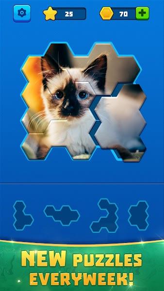 Hex Block Jigsaw