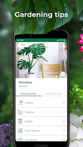 PlantSnap - FREE plant identifier app apktram screenshots 2