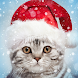 クリスマスフォトフレーム - Androidアプリ