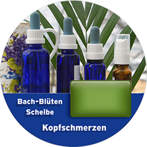 Kopfschmerzen Scheibe For PC Windows (7, 8, 10 and 10x) & Mac Computer